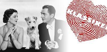 Bild zu:  Myrna Loy und William Powell in Der Dünne Mann
