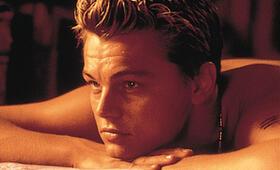 Leonardo DiCaprio - Bild 245