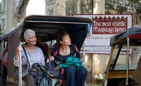 Best Exotic Marigold Hotel - Bild 28