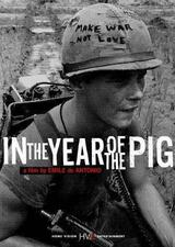 In the Year of the Pig - Poster