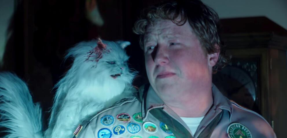 Pfadfinder mit Katze