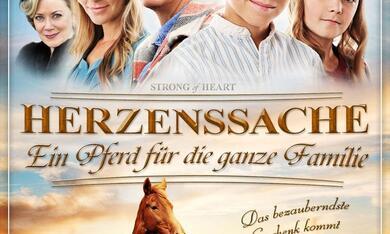 Herzenssache - Ein Pferd für die ganze Familie - Bild 1