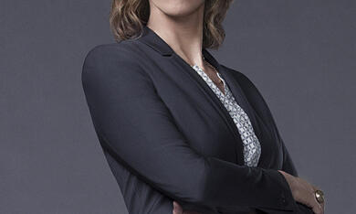 Battle Creek, Staffel 1 mit Janet McTeer - Bild 9