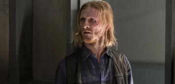 Bild zu:  Austin Amelio als Dwight inThe Walking Dead
