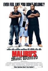 Malibu's Most Wanted - Poster