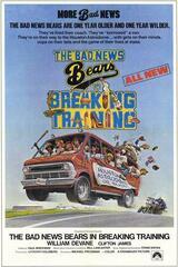 Die Bären bleiben am Ball - Poster