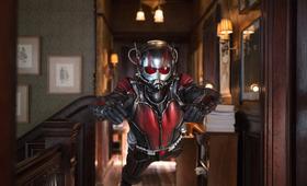 Ant-Man mit Paul Rudd - Bild 58