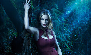 True Blood - Bild 1