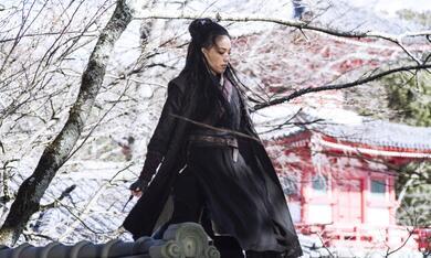 The Assassin mit Qi Shu - Bild 1