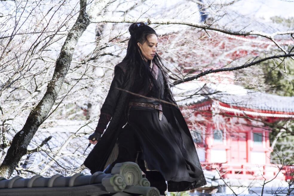 The Assassin mit Qi Shu
