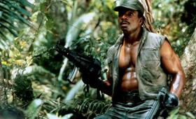Predator mit Carl Weathers - Bild 24