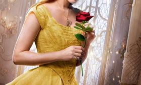 Die Schöne und das Biest mit Emma Watson - Bild 29