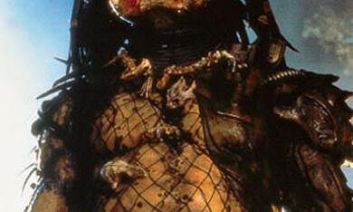 Predator - Bild 1