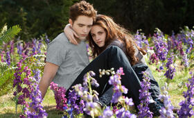 Robert Pattinson in Eclipse - Biss zum Abendrot - Bild 101