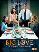 Big Love - Poster