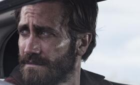 Nocturnal Animals mit Jake Gyllenhaal - Bild 7