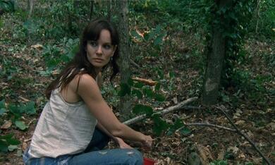The Walking Dead - Staffel 1 - Bild 7