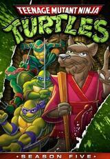 Teenage Mutant Hero Turtles - Staffel 5 - Poster