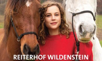 Reiterhof Wildenstein - Neuanfang, Reiterhof Wildenstein - Der Junge und das Pferd - Bild 6