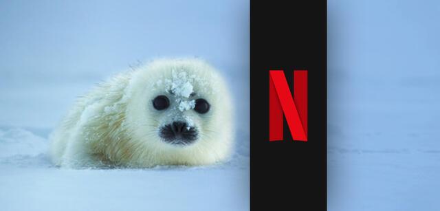 Netflix Unser Planet