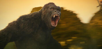 Bild zu:  Kong: Skull Island