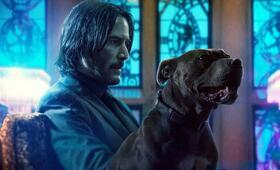 John Wick: Kapitel 3 mit Keanu Reeves - Bild 17
