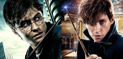 Harry Potter und Newt Scamander