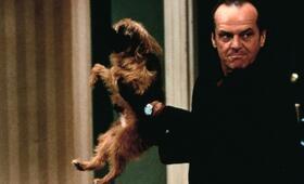 Besser geht's nicht mit Jack Nicholson - Bild 75