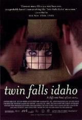 Twin Falls Idaho - Poster