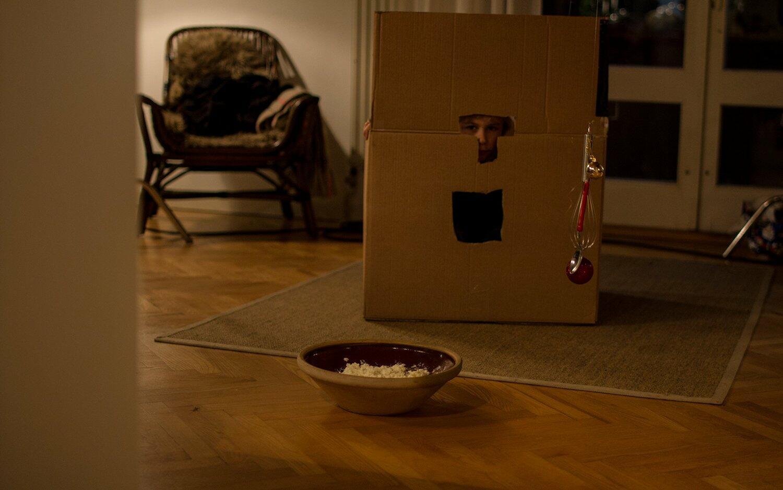 pixy der kleine wichtel bild 5 von 10. Black Bedroom Furniture Sets. Home Design Ideas
