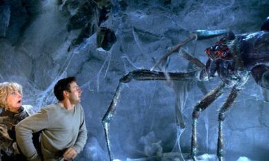 Arac Attack - Angriff der achtbeinigen Monster mit David Arquette und Eileen Ryan - Bild 9