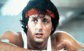 Rocky mit Sylvester Stallone - Bild 77