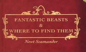 Fantastic Beasts And Where To Find Them - Bild 118