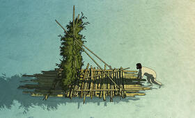 The Red Turtle - Bild 6