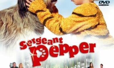 Sergeant Pepper - Poster - Bild 2