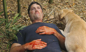 Lost Staffel 6 mit Matthew Fox - Bild 7