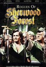 Robin Hoods Vergeltung