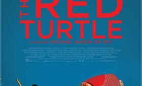Die rote Schildkröte - Bild 23