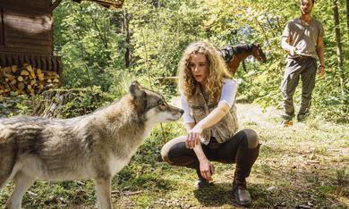 Reiterhof Wildenstein - Jacomo und der Wolf - Bild 8