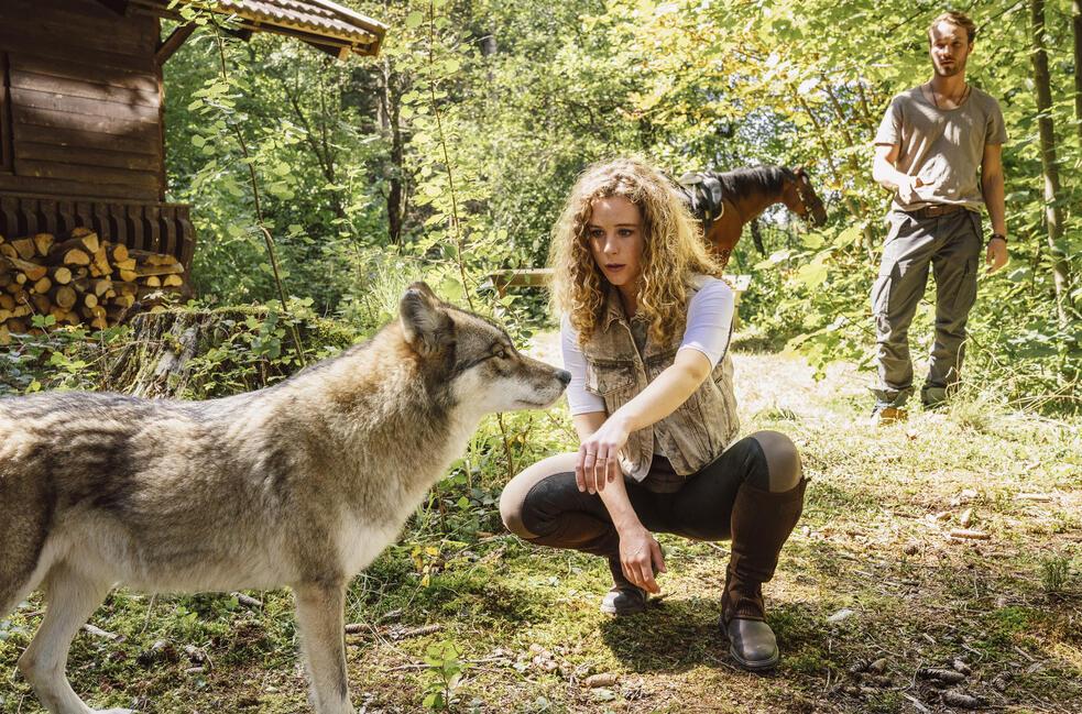 Reiterhof Wildenstein - Jacomo und der Wolf