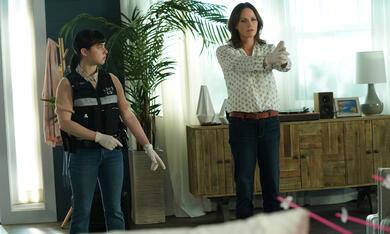 CSI: Vegas, CSI: Vegas - Staffel 1 - Bild 3
