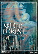Spider Forest - Poster