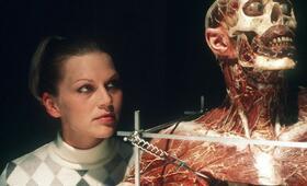 Anatomie mit Anna Loos - Bild 2