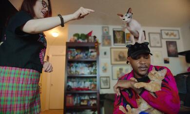 Cat People, Cat People - Staffel 1 - Bild 1