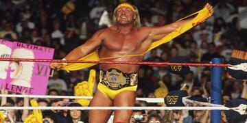 Hogan im Ring