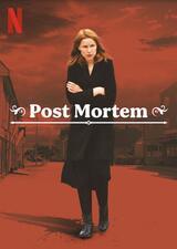 Post Mortem: In Skarnes stirbt niemand - Poster