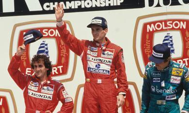 Senna - Bild 12