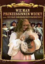 Prinzessin Dornröschen