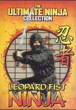 The Leopard Fist Ninja