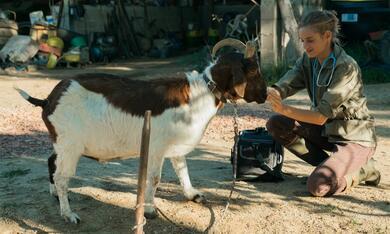 Plötzlich aufs Land - Eine Tierärztin im Burgund mit Noémie Schmidt - Bild 8